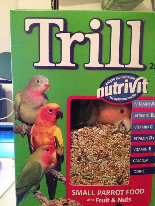 parrot in a bird seed box