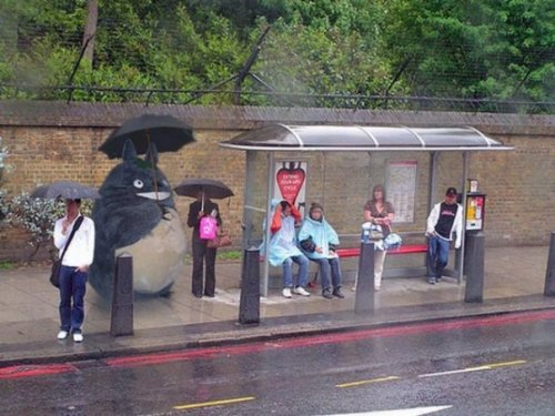 totoro waiting for the bus