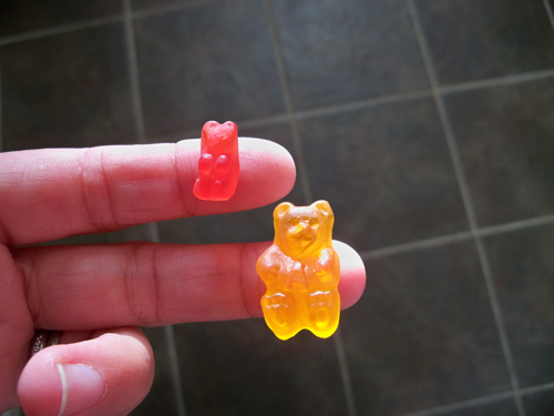 miniature gummy bears