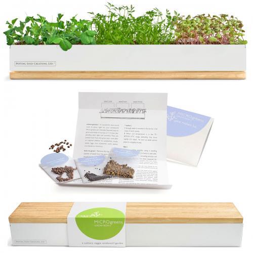 microgreens kit