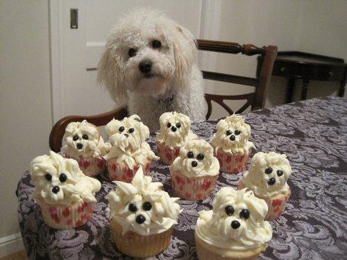 dog puppy cupcakes