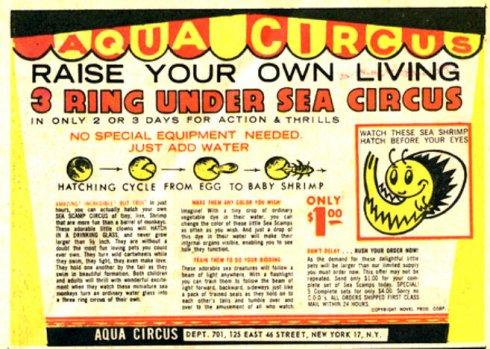 aqua circus comic book ad
