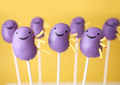 kidney cake pops