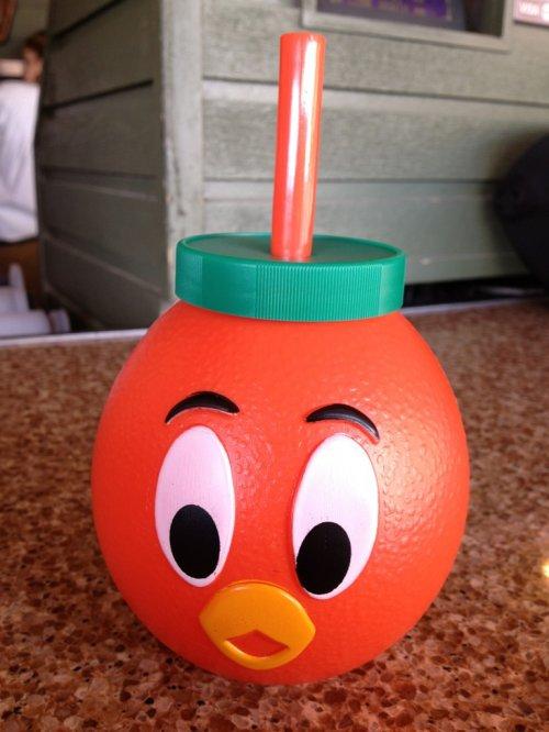 orange bird cup